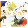 Els Ocells (guías De Campo); Àngels Julivert Za Envío Gratis