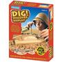 Dig! Y Descubre: Monedas Antiguas