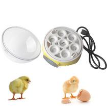 Maquina Incubadora De Huevos Pollos 220v