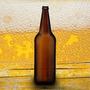 Envases Cerveza 1 Litro X1002