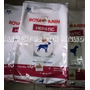 Royal Canin Dog Hepatico / Hepatic X 10kg