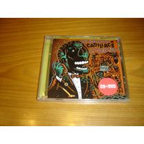 Fabulosos Cadillacs La Luz Del Ritmo Cd Dvd Vicentico