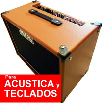 Amplificador Nativo Ac40 Guit Tec Karaoke Tarjeta 12 Sin Int