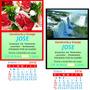 Almanaques Apliques Con Iman - Calendarios 2017 - 500 Uni.