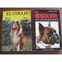 Libros El Boxer Y El Collie. Cria Y Cuidados Del Perro