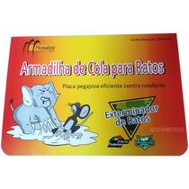 Ratoeira Adesiva Western Cola Visgo Pega Rato Com 20 Unidade