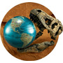 El Tío Milton Nat Geo Globe Último Dinopedia