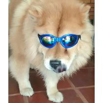 Oculos De Sol Para Cães Com Proteçao Uv (frete Grátis)