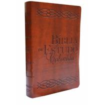 Bíblia De Estudos Colorida - Capa De Luxo