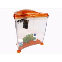 Pecera Marina Goldfish Kit Inicial 10 Lts