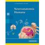 Neuroanatomía Humana García-porrero Nuevo!