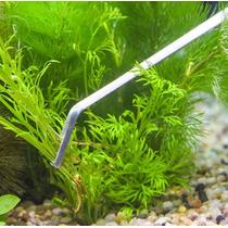 Pinzas Plantado Curva 27 Cm Acero Inoxidable Aquascaping Co2