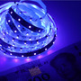 Fita De Led 3528 Uv Ultravioleta (luz Negra) + Fonte 12v