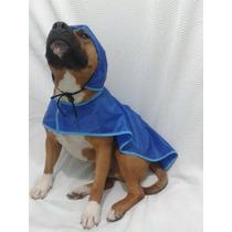 Capa De Chuva Cachorro Porte Grande Pra Pets