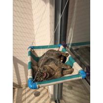 Cama Gato Caminha Pet Ventosas Para Janelas Mimax Bed