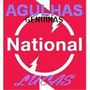 Agulha National/ Tecnics Ss 4000 Ponta -de Diamante