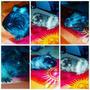 Hermosos Conejillos De India Bebes