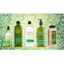 Gel De Baño Aromaterapia Bath&body Works 295ml