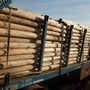 Postes De Madera Meolo Eucaliptus Colorado Para Cercos