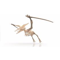 Rompecabeza Didactico 3d Dinosaurio Terodactilo Coleccion