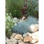 Piedra Decorativa Para Jardines, Fuentes De Agua Y Terrazas.