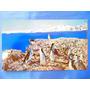 El Arcon Tarjeta Postal Antartida Argentina Pinguinos 43129