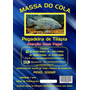01 Kg Massa Para Pesca Do Cola Um Kg = (2x500gr) - Tilápia