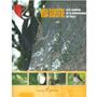 Vida Silvestre En El Campus De La Universidad Del Valle - Va