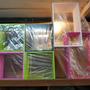 Cubos Decorativos Colores