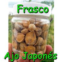 Frasco Con 100 Ajos Japonés O Chino Semilla Natural
