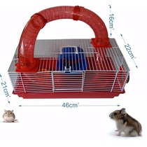 Gaiola Para Hamster Tubos Divertidos