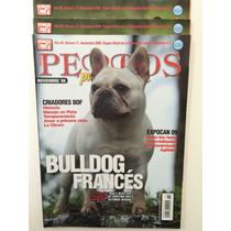 Revista Perros Pura Sangre Bulldog Frances Pack 3 Ediciones