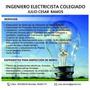 Ingeniero Electricista Colegiado / Edelnor / Luz Del Sur
