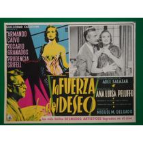 Ana Luisa Peluffo La Fuerza Del Deseo Armando Calvo Original