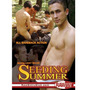 Pelicula Dvd Adultos Gay Seeding Summer Erotika