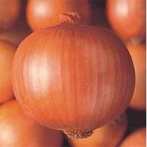 Sementes De Cebola Crioula Pcte C/ 250 Gr Topseed