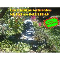 Fuente De Agua Minicascada Con Canteros Para Plantas Natural