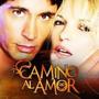 Telenovela Camino Al Amor Completa En Dvd