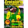 150 Sementes De Crotalária - Spectabilis+ochroleuca+juncea