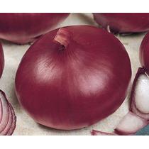 Sementes De Cebola Roxa Red Creole Pcte C/ 100 Gr