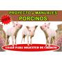Proyecto+manuales De Ganado Porcino Cerdo Sirve Para Credito