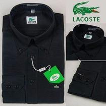 Promoção Camisa Social Lacoste | Tommy Hilfiger Original