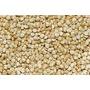 Semillas De Quinoa - Excelente Calidad Y Pureza - (kg)