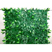 Muro Inglês Painel De Folhas De Ficus 1 X 1