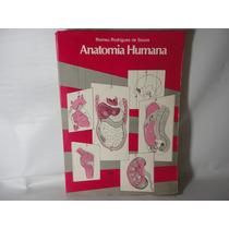 Anatomia Humana - Romeu Rodrigues De Souza