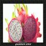 60 Sementes De Pitaya 30 Branca E 30 Vermelha + Brinde