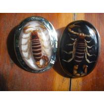 Hebilla Charra Alacran Escorpion Encapsulada