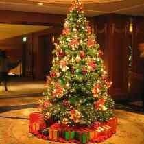 Árvore Natal Decorada Pinheiro Imperial 1,80m - 1072 Galhos
