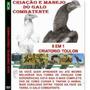 Dvd Criação E Manejo De Galos Combatentes - Frete Grátis