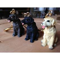 Labrador Creme / Preto / Chocolate 3 Chaveiros